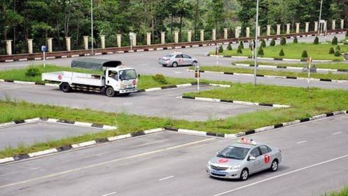 tphcm tạm ngừng thi giấy phép lái xe ngừa covid 19