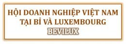Hợp tác với hội doanh nghiệp tại Bỉ và Luxembourg