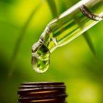 Tỏi độc, rết, bọ cạp là dược liệu có độc tính để làm thuốc