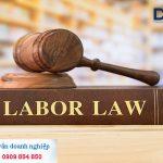 Soạn thảo Hợp đồng lao động trọn gói ở TPHCM