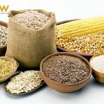 Danh mục thức ăn chăn nuôi theo tập quán được lưu hành tại Việt Nam