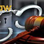 Truy cứu trách nhiệm hình sự với trường hợp sử dụng thủ đoạn mua giới hôn nhân